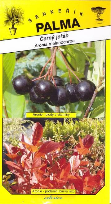 Semena Černý jeřáb Aronie - Aronia melanocarpa